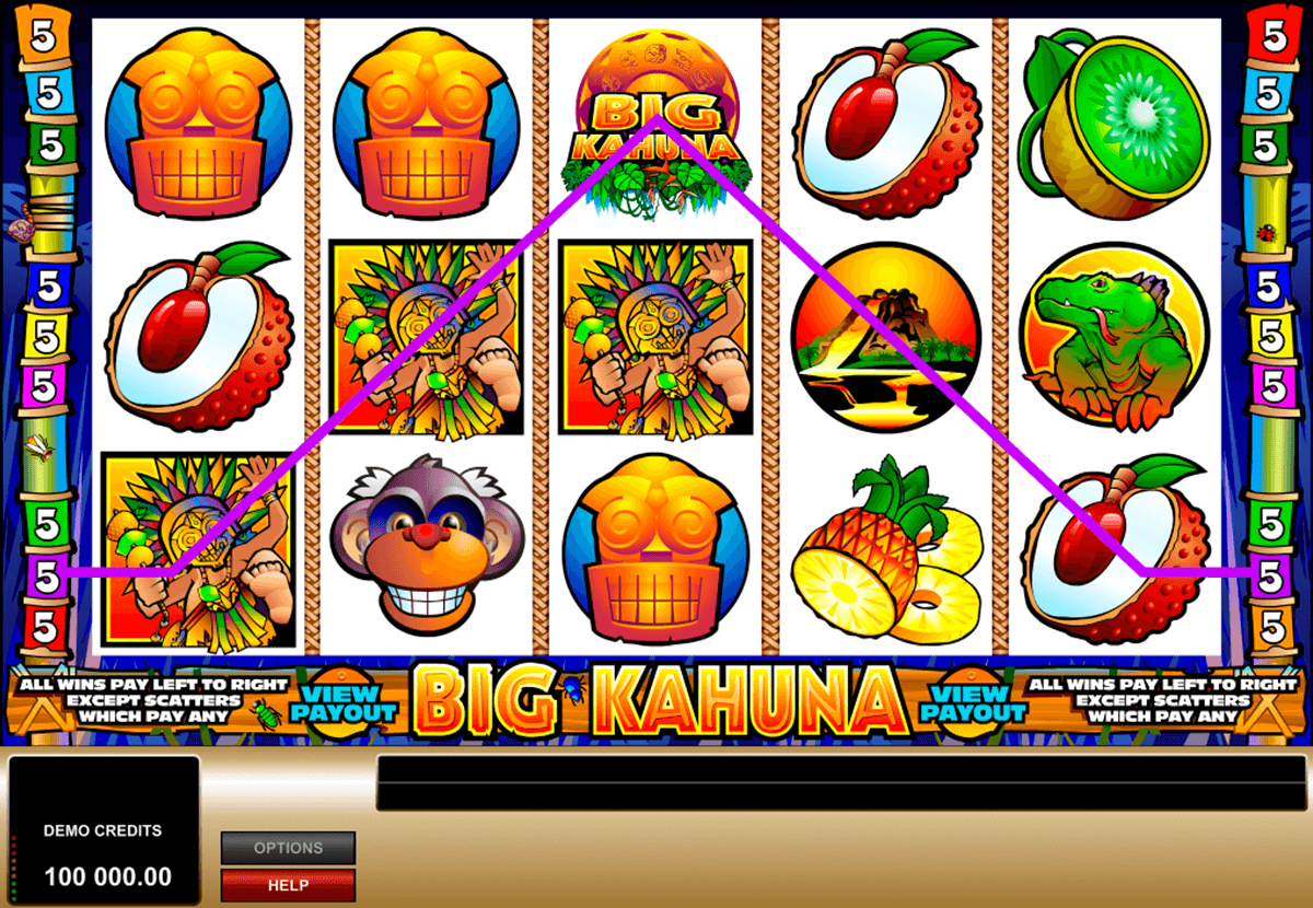 big kahuna microgaming pacanele