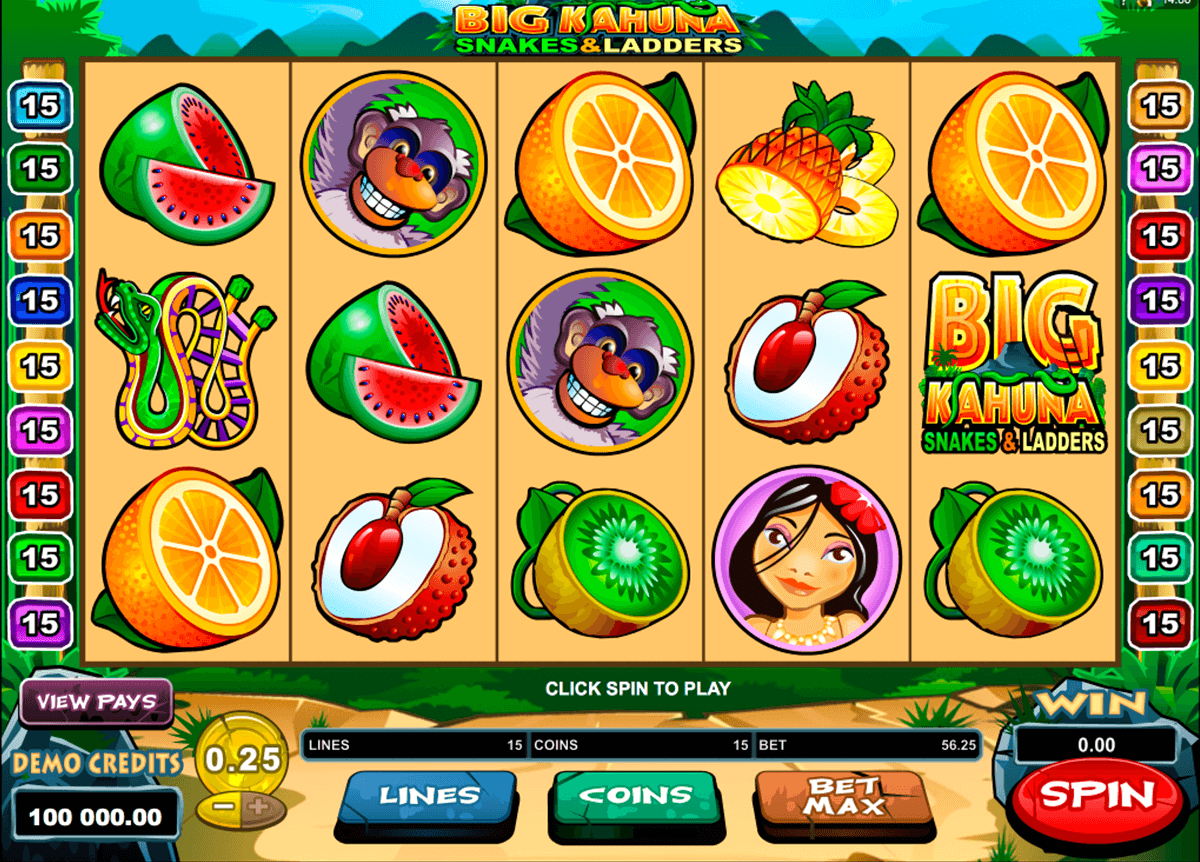 big kahuna snakes and ladders microgaming pacanele