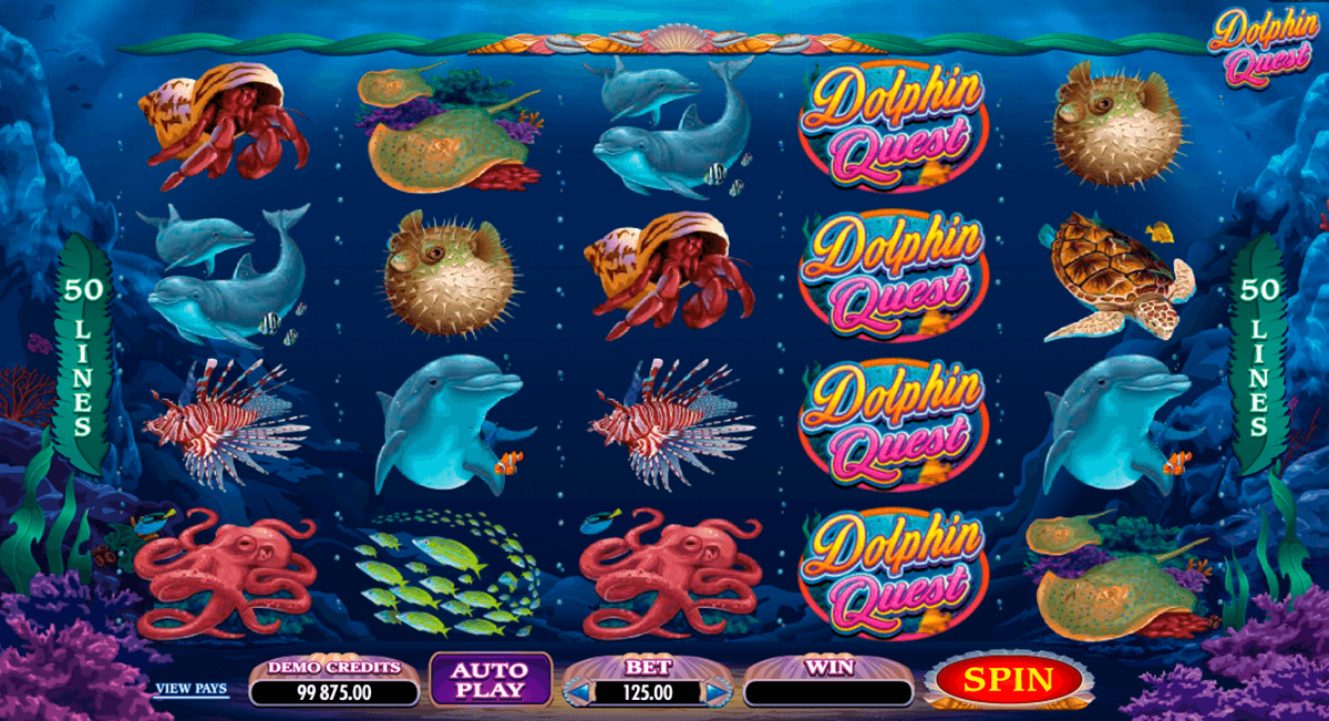 dolphin quest microgaming pacanele