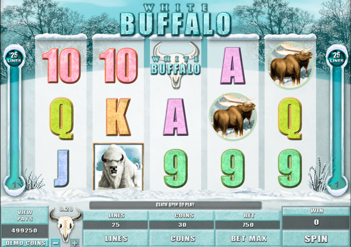 white buffalo microgaming pacanele